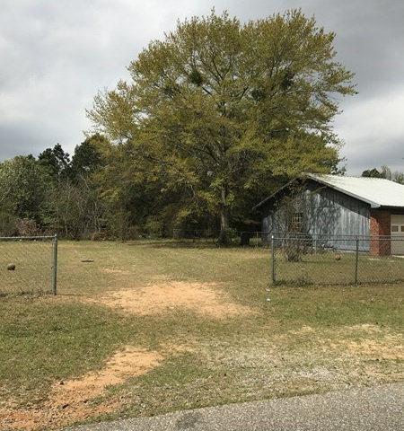 Lot 72 Canterbury Farms, Midland City, AL, 36350 Photo 1