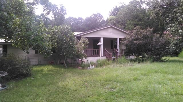 390 County Road 98, Abbeville, AL, 36310 Photo 1