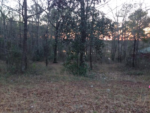 TBD HICKORY TREE LANE, Daleville, AL, 36322 Photo 1