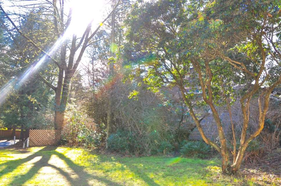 1134 Miller Road, Bowen Island, BC - CAN (photo 5)