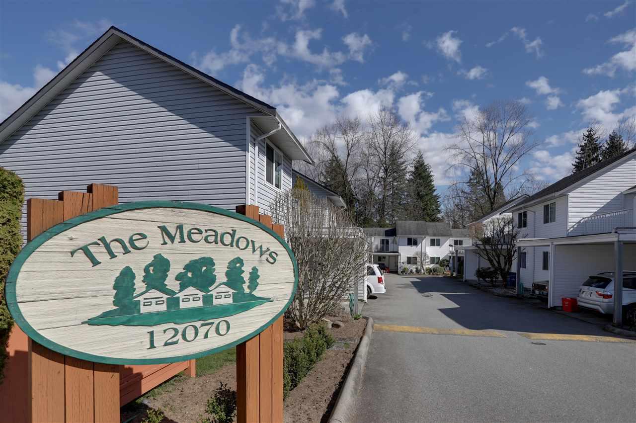 7 12070 207A STREET, Maple Ridge, BC, V2X 9X9 Photo 1