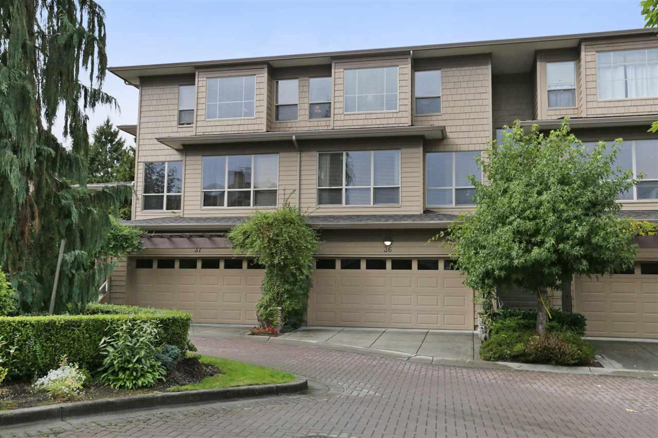 36 16655 64 AVENUE, Surrey, BC, V3S 3V1 Photo 1