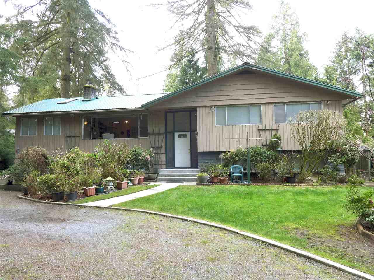 13817 56A AVENUE, Surrey, BC, V3X 2X5 Primary Photo