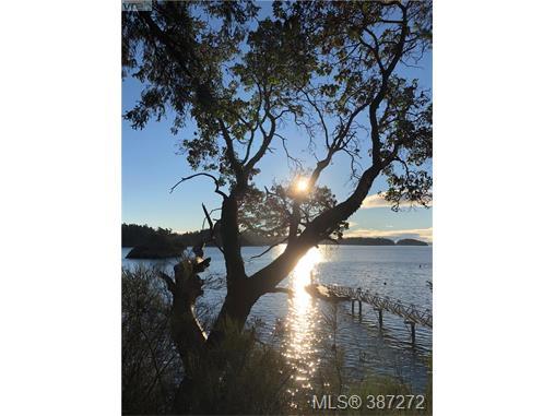 29 McKenzie Cres, Piers Island, BC, V8L 5Y7 Photo 1