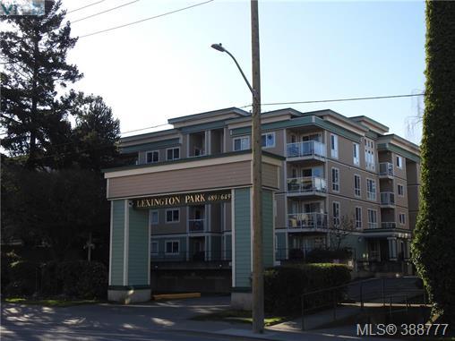 202 649 Bay St, Victoria, BC, V8T 5H8 Photo 1