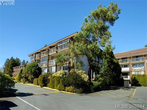 416 1009 McKenzie Ave, Saanich East, BC, V8X 4B1 Photo 1