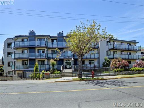 407 1241 Fairfield Rd, Victoria, BC, V8V 3B3 Photo 1